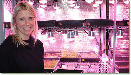 Christy Kaledas of Black Pearl Gardens using TotalGrow Broad Grow Spectrum Light LED Bulbs for Microgreen and Herb Production