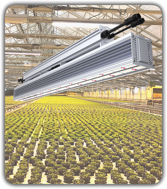 TotalGrow High Intensity Top-Light LED Fixture Hybrid Greenhouse Lighting